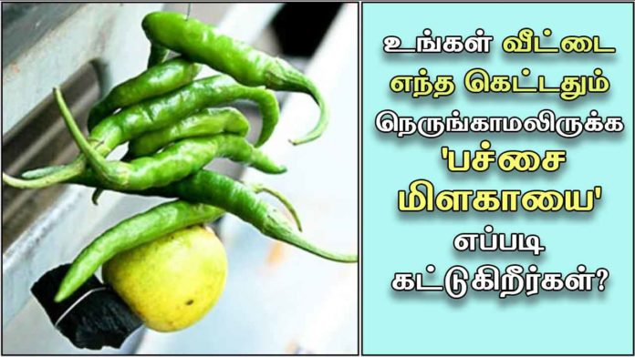 lemon-and-chilli-thirusti
