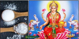 salt-lakshmi