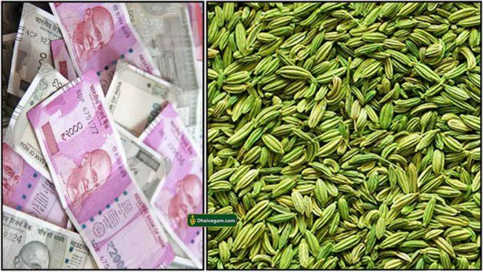cash-sombu