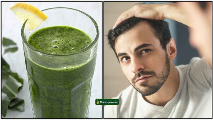 curry-leaves-juice-hair-fall