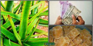 katrazhai-vellam-cash