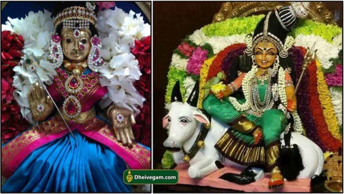 maheshwari-amma