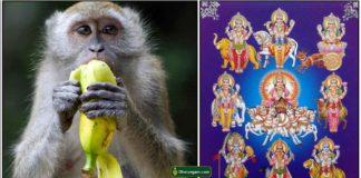 monkey-navagraha