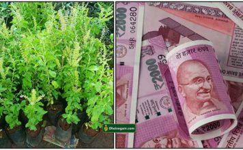 thulasi-cash