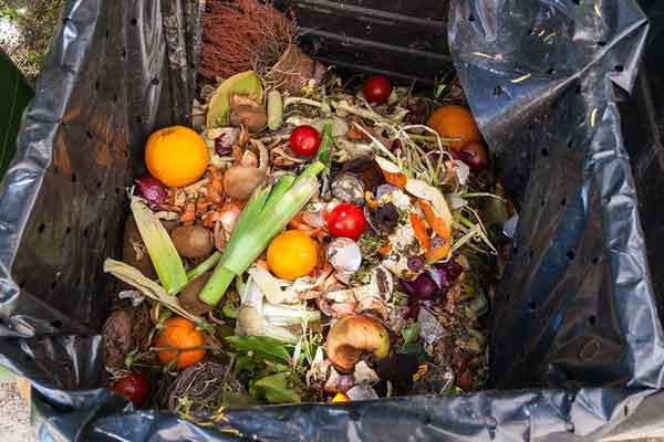 veggitable-waste