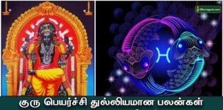 guru-peyarchi-palan-meenam