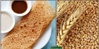 wheat-dosa