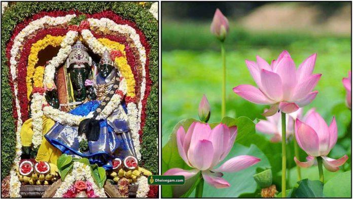 lakshmi-ganapathy-lotus