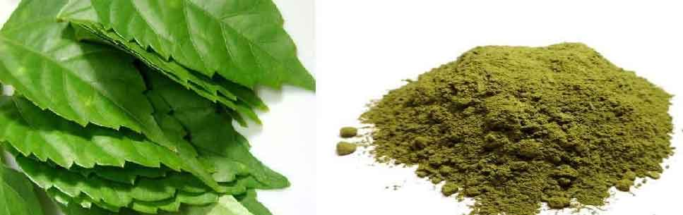 herbal powder for hair
