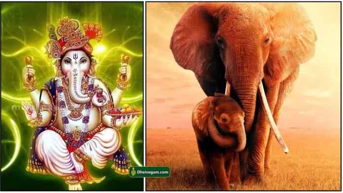 vinayagar-elephant