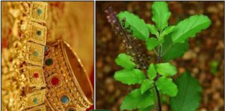 gold-thulasi