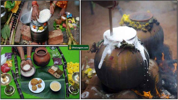 pongal-festival-2021
