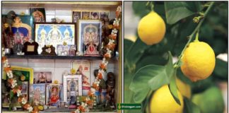 pooja-room-lemon