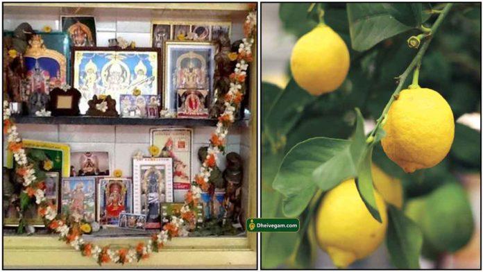 pooja-room-lemon