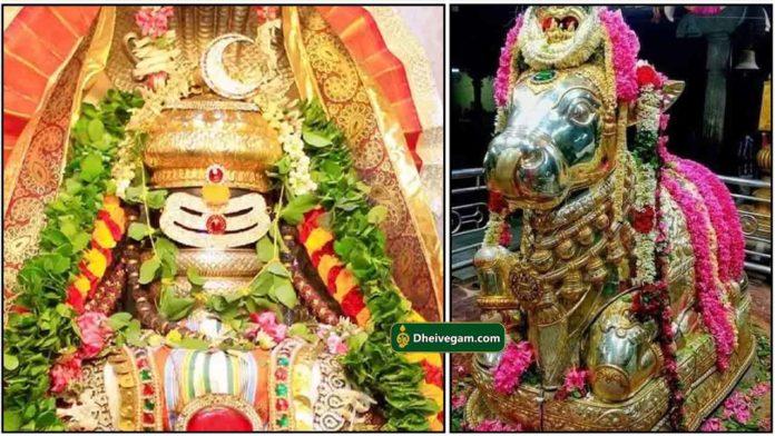 sivan-nandhi-pradosham
