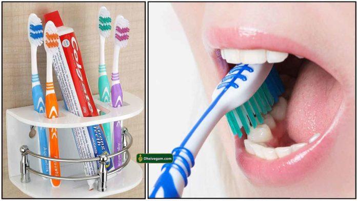 tooth-brush-holder2