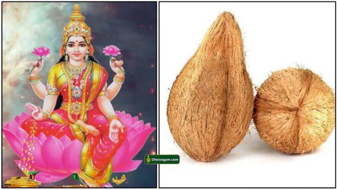 lakshmi-coconut