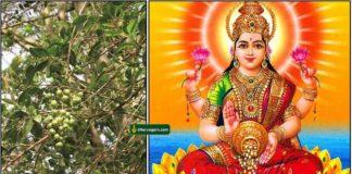 maruthani-lakshmi