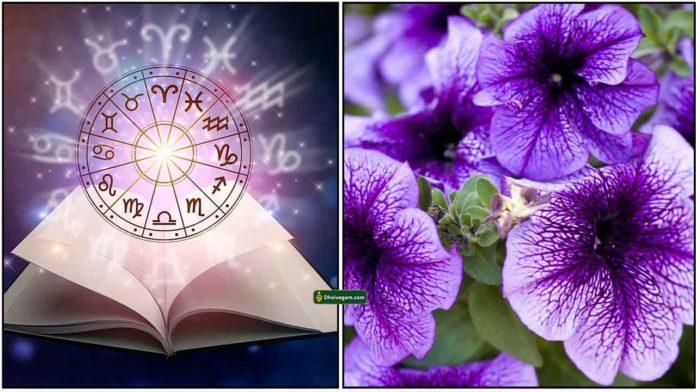 astro-flower
