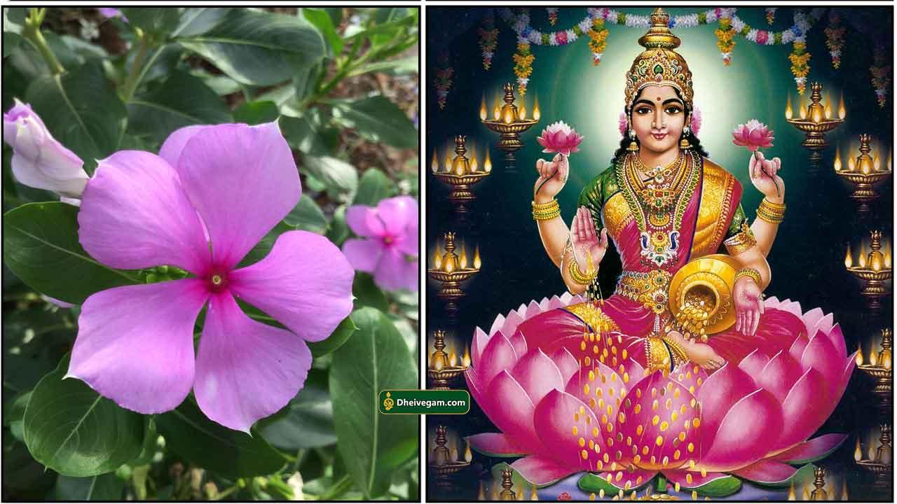 nithya-kalyani-lakshmi