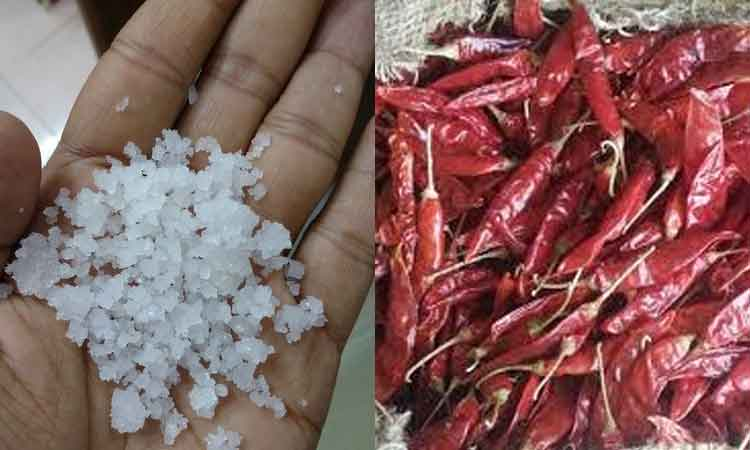 salt-milagai