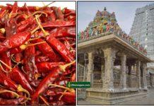 chilli-temple
