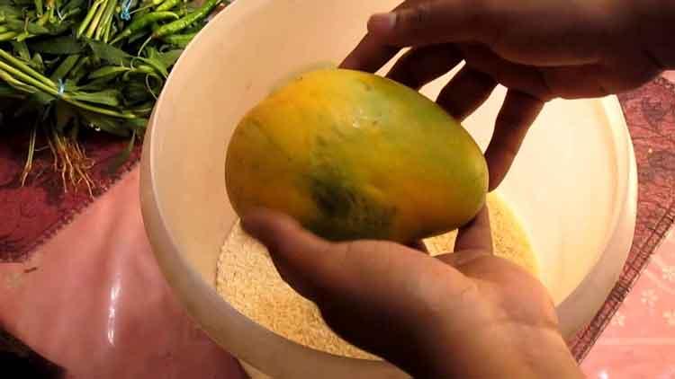 mango-in-rice