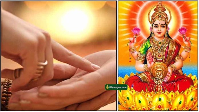palm-lakshmi