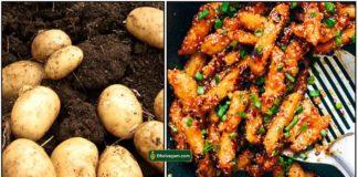 potato-chilli