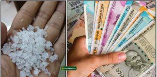 salt-cash