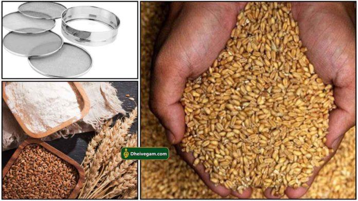 wheat-process