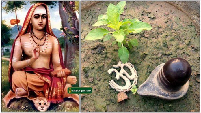 athisankarar-lingam