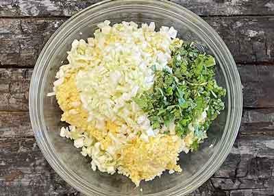 cabbage-tikki4