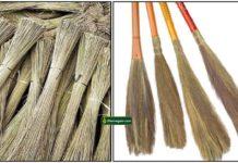 thudaippam-broom
