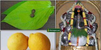 vetrilai-pakku-lemon-vinayagar